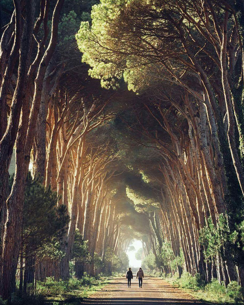 Agriturismo e Benessere - Beauty Farm a Pisa